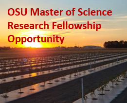 MS Research Fellowship Opportunities