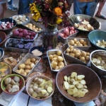 Potatoes arranged for a tasting. Photo credit: Lane Selman