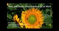 Bee Protection Protocol  Kristine Buckland