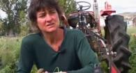 Organic No-Till Living Mulch Beneficials: Weed Em and Reap