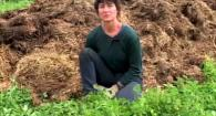Organic No-Till Living Mulch Composting: Weed Em and Reap