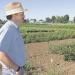 Jim Myers of Oregon State University is part of a research cooperative that is breeding vegetable varieties especially suited for organic farming.