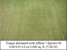 Picture: Torque alternated with Affirm + Spectro 90 0.60/0.9+3.0 oz/1,000 sq. ft