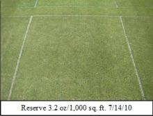 Picture: Reserve 3.2 oz/1,000 sq. ft. 7/14/10