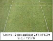 Picture: Renown – 2 apps applied at 2.5 fl oz/1,000 sq. ft. (7/14/10)