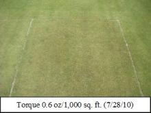 Picture: Torque 0.6 oz/1,000 sq. ft. (7/28/10)