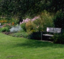 Practical Lawn Establishment and Renovation